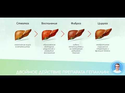 Видео о препарате Гепаклин №60 таблетки