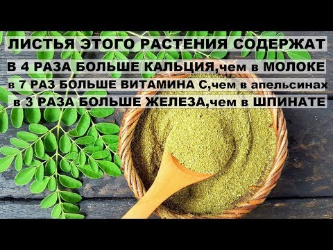 Видео о препарате Моринга (Morínga) капсулы 400мг №90