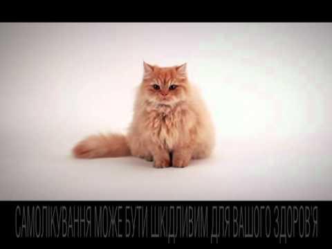Видео о препарате Алерон левоцетиризин табл, п/о 5мг N30